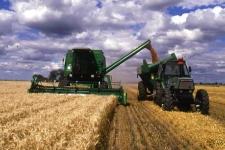 Argentina sẽ bỏ thuế xuất khẩu nông sản