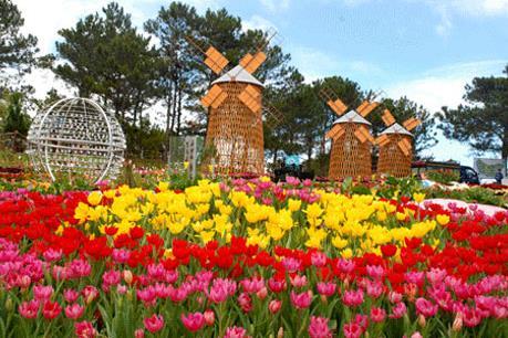 Festival hoa Đà Lạt 2015 sẽ mở rộng tới cả các khu dân cư