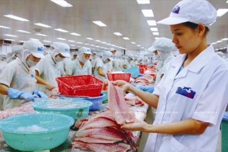 Không để xuất khẩu cá tra sang Hoa Kỳ bị gián đoạn