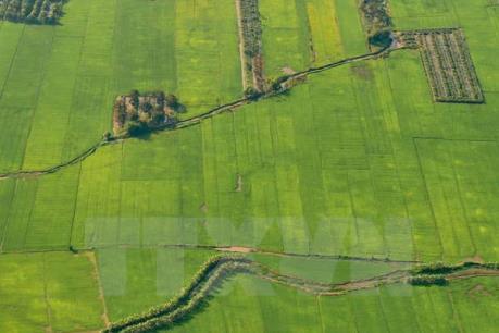 Hà Nam cho doanh nghiệp Nhật Bản thuê đất ưu đãi để phát triển nông nghiệp