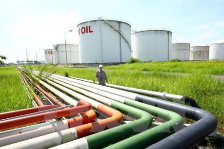 Doanh nghiệp nhập khẩu xăng dầu không bị giới hạn về thời gian vay ngoại tệ