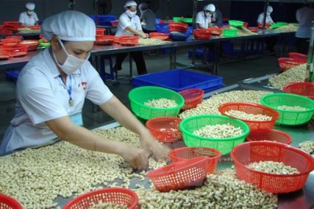 Hạt điều Việt Nam có mặt tại Hội chợ - Triển lãm lớn nhất Hong Kong (Trung Quốc)