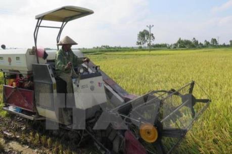 Trung Quốc tập trung cải cách nguồn cung để thúc đẩy nông nghiệp