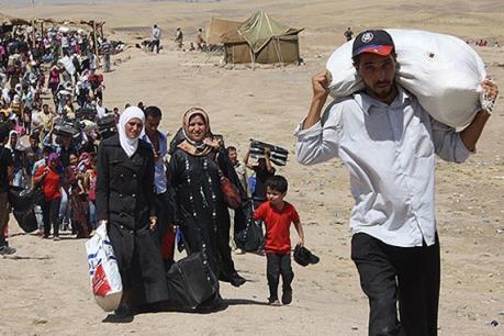 8% người di cư dùng hộ chiếu Syria giả để xin tị nạn tại Đức