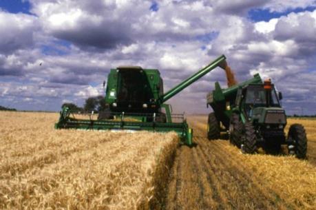 Ukraine tham vọng trở thành nhà xuất khẩu thực phẩm hàng đầu châu Âu