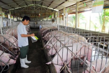 Bộ NN&PTNT siết chặt quản lý chất cấm trong chăn nuôi