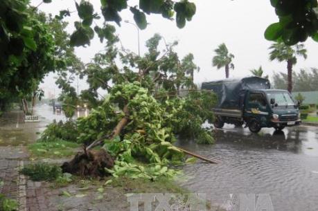 Dự báo thời tiết: Vùng áp thấp mạnh lên thành áp thấp nhiệt đới