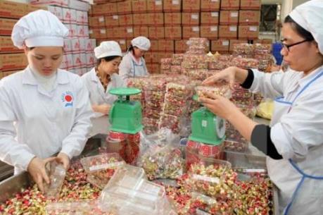 Hà Nội: Thu giữ gần 1 tấn ô mai và kẹo không rõ nguồn gốc