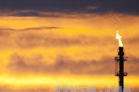 Giá dầu thô Mỹ vượt dầu Brent lần đầu trong năm nay