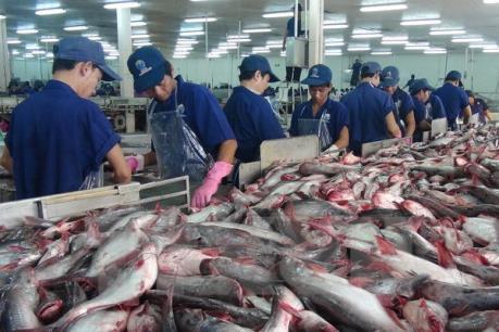 """Thủy sản Việt Nam chỉ chiếm """"góc nhỏ"""" trên thị trường toàn cầu"""