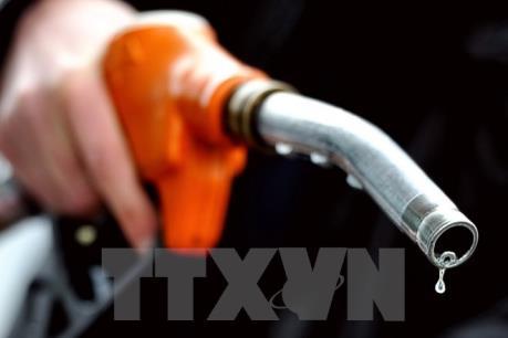 Sản lượng dầu của Nga tăng kỷ lục bất chấp giá thấp