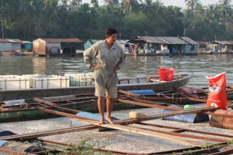 Cà Mau công bố thiên tai cấp độ 2 trên lĩnh vực nuôi trồng thủy sản