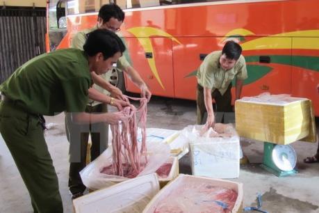 Lào Cai bắt giữ hơn 3 tấn lòng lợn bốc mùi hôi thối