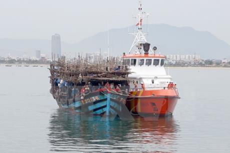 Cứu hộ an toàn 8 ngư dân tàu cá Bình Định