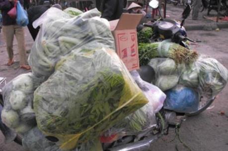 Khẩn trương xác minh thông tin cung cấp rau không an toàn cho 7 trường tiểu học ở Hà Nội