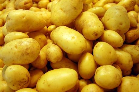 Peru nghiên cứu trồng khoai tây trên sao Hỏa