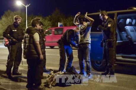 Vấn đề người di cư: Đức bắt giữ 40 đối tượng trong chiến dịch truy quét tội phạm di cư