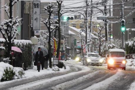 Nhật Bản: Tuyết rơi dày khiến giao thông gián đoạn