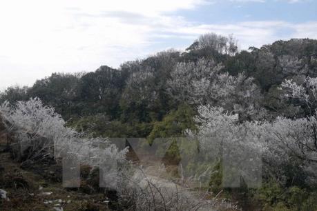 Dự báo thời tiết: Không khí lạnh rất mạnh sẽ ảnh hưởng tới vùng núi phía Bắc