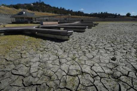 FAO cảnh báo tình trạng đất đai bị thoái hóa ở Mỹ Latinh