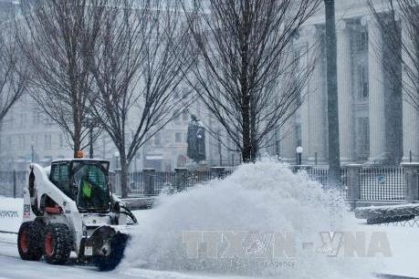 Bờ Đông nước Mỹ hứng chịu bão tuyết