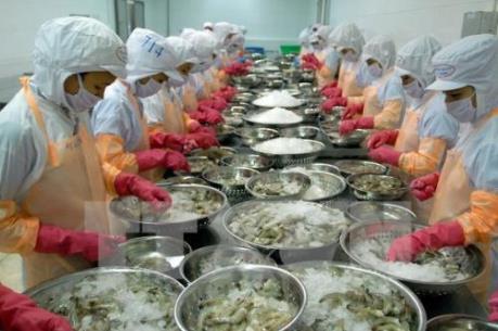 VASEP: Xuất khẩu tôm sang Mỹ sẽ có nhiều khởi sắc