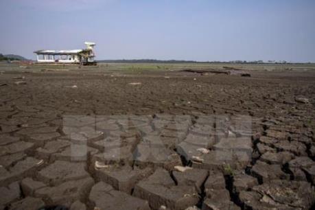 Giới khoa học cảnh báo về tốc độ biến đổi khí hậu