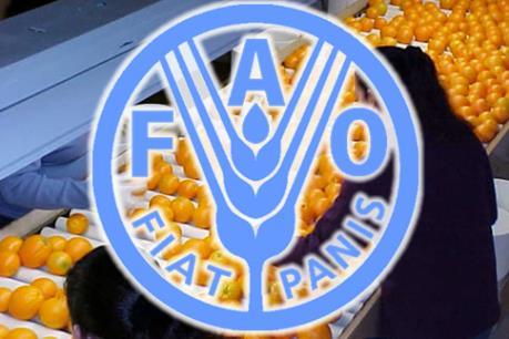 Việt Nam tham gia dự án khu vực do FAO tài trợ