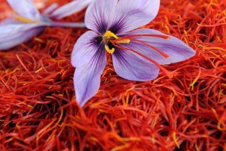 Gia vị đắt nhất thế giới saffron của Iran sắp quay lại thị trường Mỹ