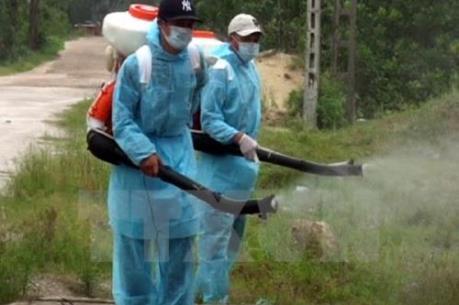 Sẵn sàng cơ số thuốc, phương tiện hỗ trợ  xử lý ổ dịch vi rút zika