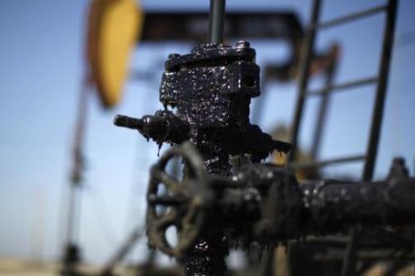 """Ấn Độ: Hoạt động thăm dò-khai thác dầu khí phát triển bất chấp giá dầu """"rơi tự do"""""""