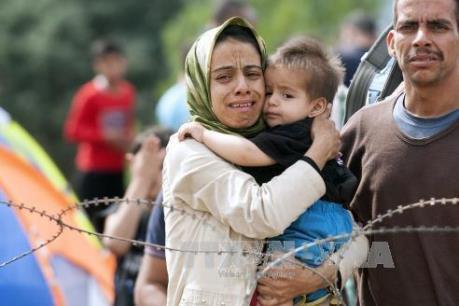 Vấn đề người di cư: 10.000 trẻ em tị nạn mất tích ở châu Âu