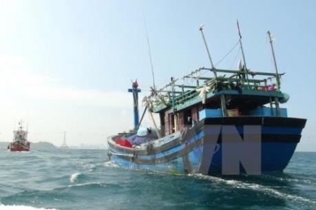 Đưa thuyền viên tàu QNa 95997TS gặp nạn về đất liền an toàn