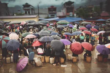 Dự báo thời tiết ngày 1/2: Bắc Bộ đón đợt rét đậm mới, Hà Nội có nơi dưới 11 độ C