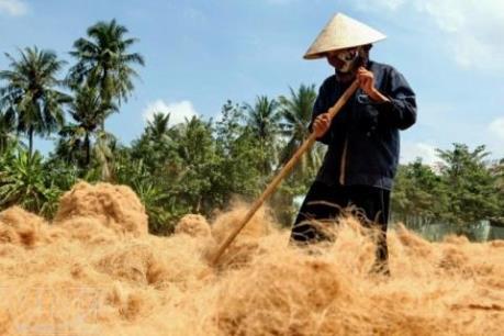 Nhộn nhịp làng nghề làm chỉ xơ dừa ven sông Thom