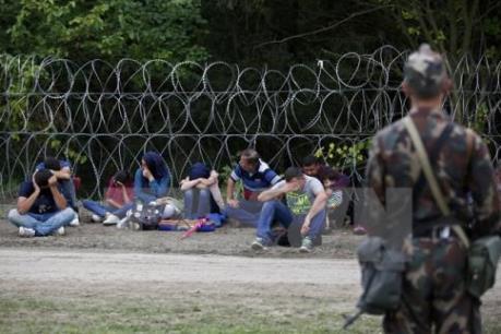 Đức thông qua gói biện pháp thứ hai đối phó với vấn đề di cư