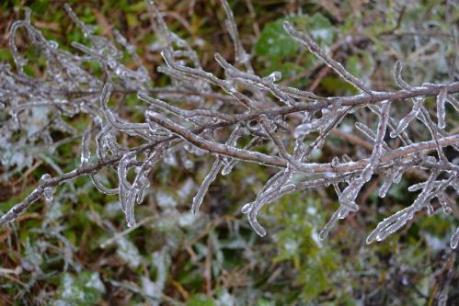 Dự báo thời tiết: Tối mai, vùng núi cao Bắc Bộ đề phòng băng giá