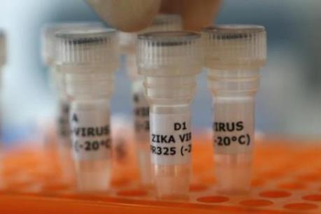 Châu Âu thành lập nhóm chuyên gia về virus Zika