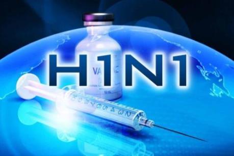 Ấn Độ: 26 trường hợp ở Punjab tử vong do mắc cúm gia cầm