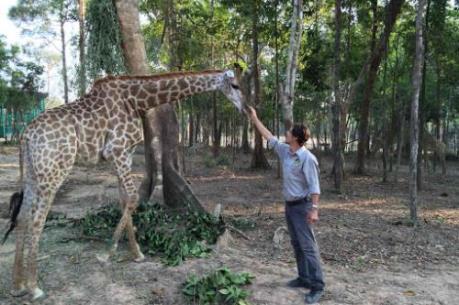 Tập đoàn Vingroup:  Không có chuyện hàng ngàn động vật chết tại Vinpearl Safari
