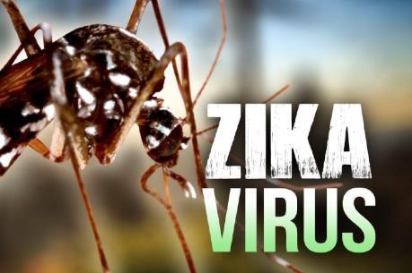 Nhật Bản xác nhận trường hợp nhiễm virus Zika đầu tiên kể từ năm ngoái