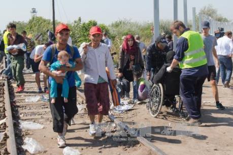 Vấn đề người di cư: Châu Âu lo ngại Ai Cập là cửa ngõ mới