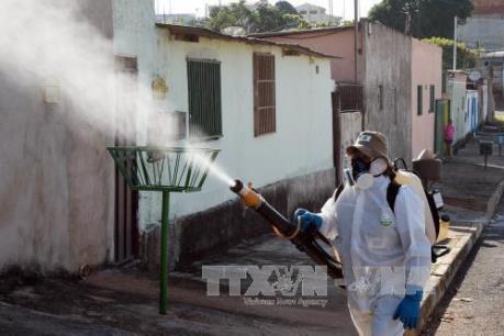 Trung Quốc tiếp tục ghi nhận thêm trường hợp nhiễm virus Zika