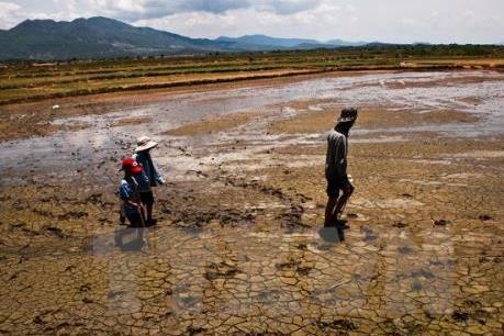 Hơn 2.000 hộ dân ở Đắk Lắk thiếu nước sinh hoạt vì khô hạn