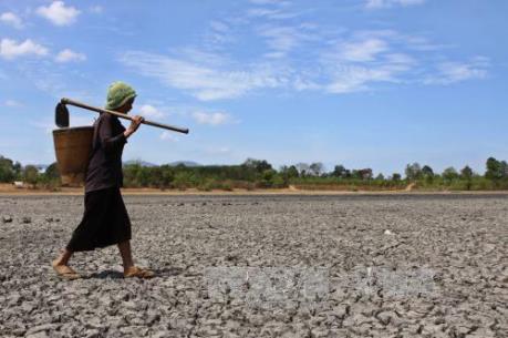 Hạn mặn ở Đồng bằng sông Cửu Long - Bài 2: Khát trên vùng sông nước