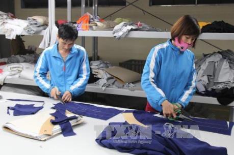 Vitas lên tiếng trước thông tin Campuchia xuất khẩu dệt may vào EU vượt VN