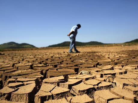 Vấn đề biến đổi khí hậu: Gia tăng số người tử vong vì thiếu lương thực