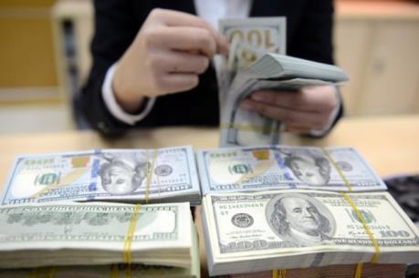 VEPR: Cần triển khai đồng bộ các giải pháp tạo niềm tin vào tiền đồng
