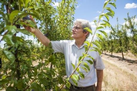 Nông nghiệp Australia đối mặt với nguy cơ do tình trạng ấm lên toàn cầu