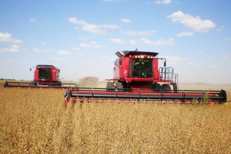 Sản lượng ngũ cốc Brazil có thể tiếp tục phá kỷ lục